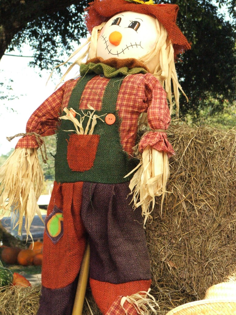 The Insult that Angers Me: A Lesson of a Straw Man